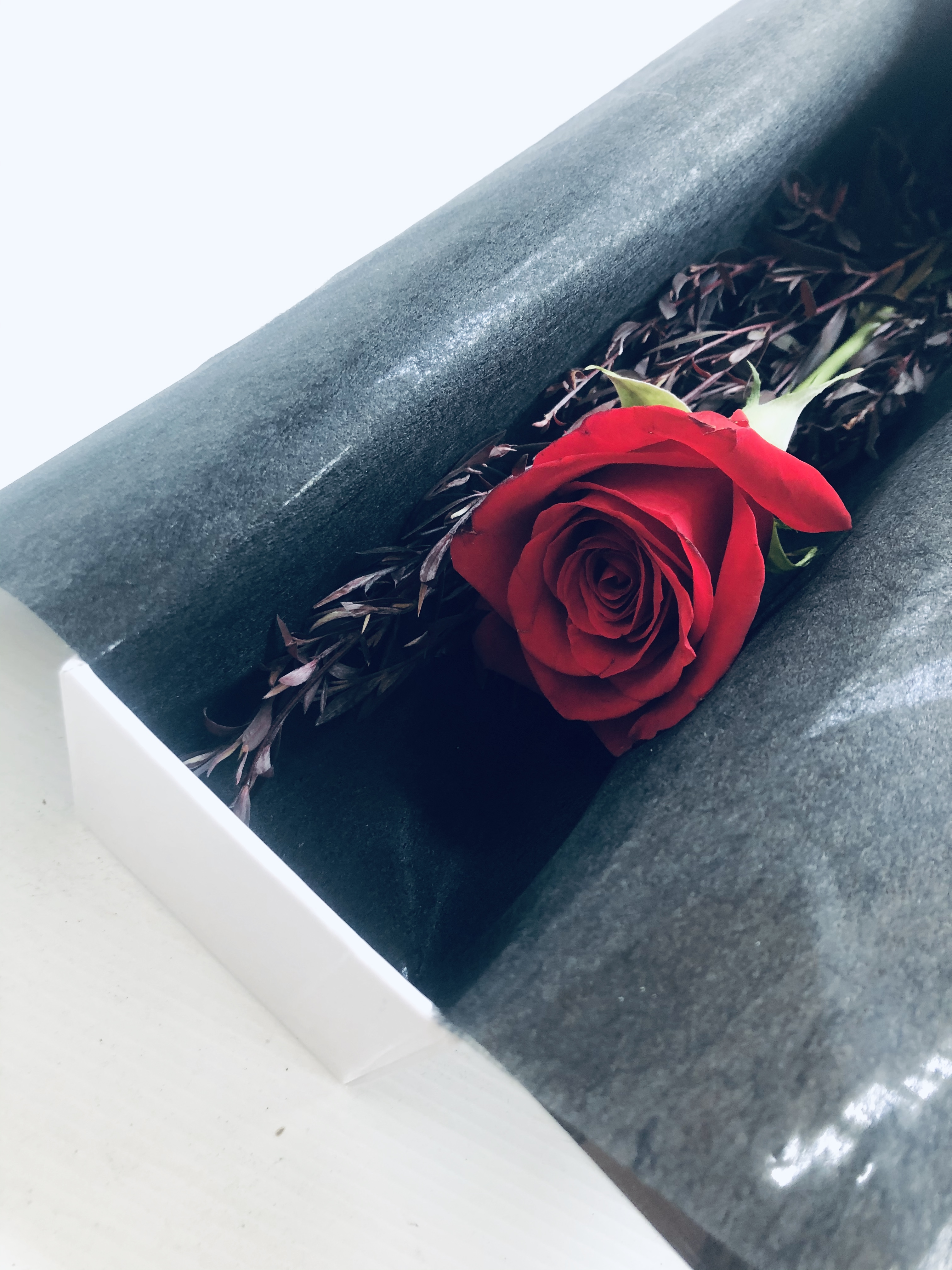 Single Boxed Red Rose