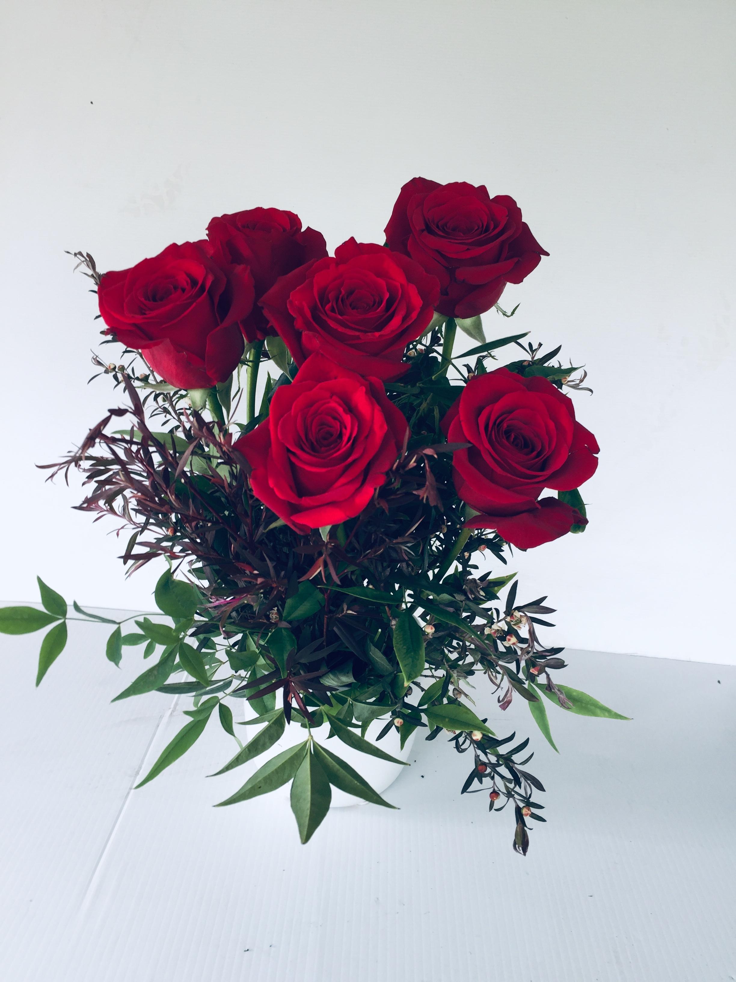 6 Red Rose Ceramic Pot